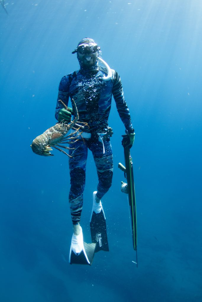 freediving lobster spearfishing bare hands
